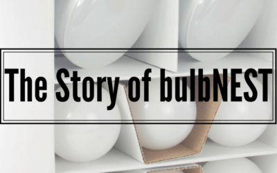 The Story of bulbNEST