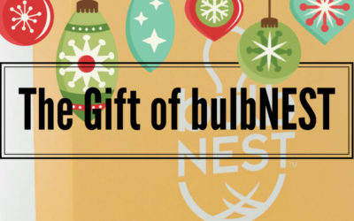 Give the Gift of bulbNEST