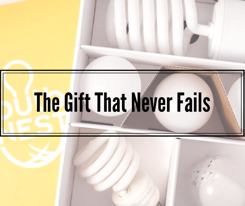 bulbNEST – The Gift That Never Fails